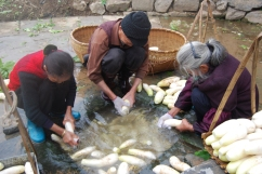 1 Jan 2012 Fuli Village (26)