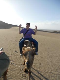 riding camels in the Gobi Desert
