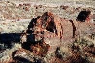 17 Feb 2014 Petrified Forest National Park (135) copy