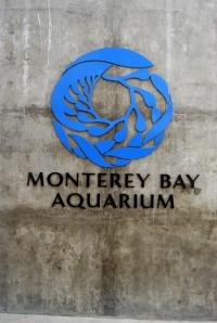 10 July 2012 Monterey Bay Aquarium