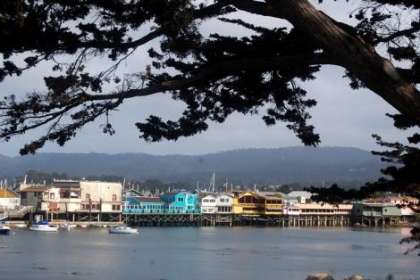 Monterey (23)