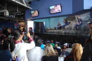 Monterey Bay Aquarium (167)