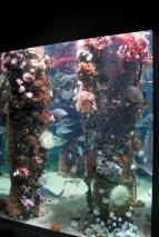 Monterey Bay Aquarium (203)
