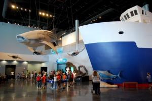 Aug 2014 Living Planet Aquarium (9)