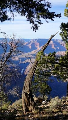 8 Nov 2014 Grand Canyon (104)