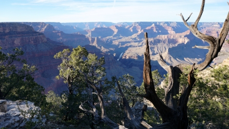 8 Nov 2014 Grand Canyon (110) copy