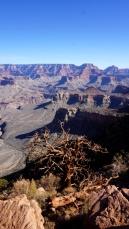 8 Nov 2014 Grand Canyon (39)