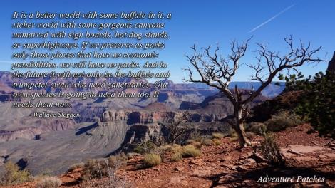 8 Nov 2014 Grand Canyon (50) copy copy
