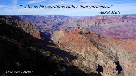 9 Nov 2014 Grand Canyon (196) copy copy