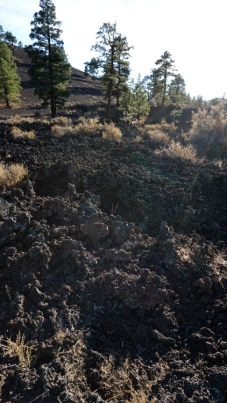 9 Nov 2014 Sunset Crater NM (6)